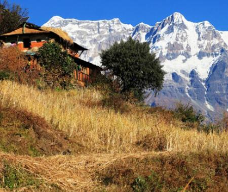 West Nepal Lodge and Camping Trekking